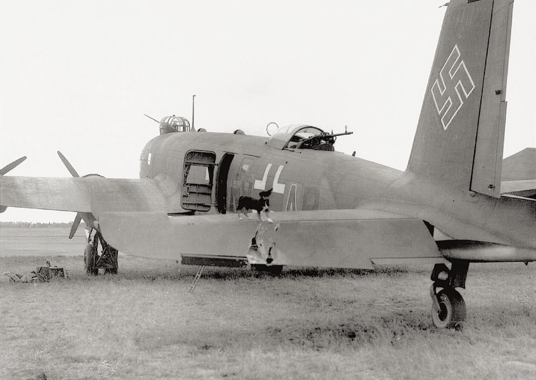Naam: Foto 531. Focke-Wulf Condor met beschadiging en mascotte. 1100 breed.jpg Bekeken: 196 Grootte: 92,5 KB