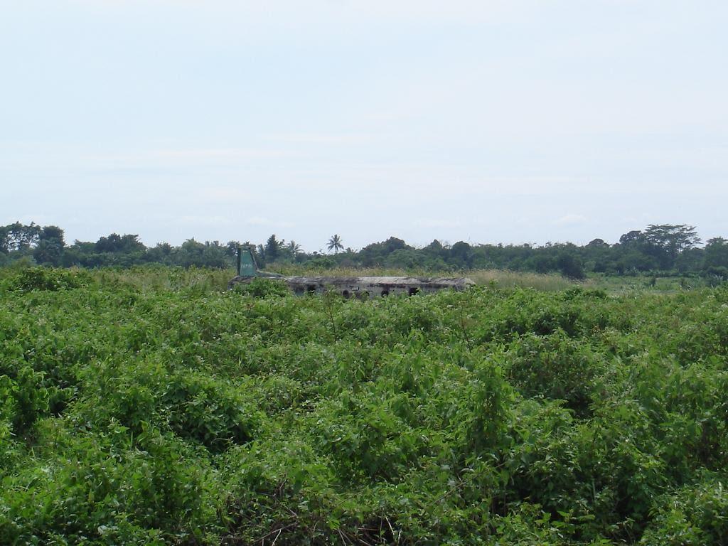 Naam: Budiarto, Indonesia...jpg Bekeken: 406 Grootte: 140,3 KB