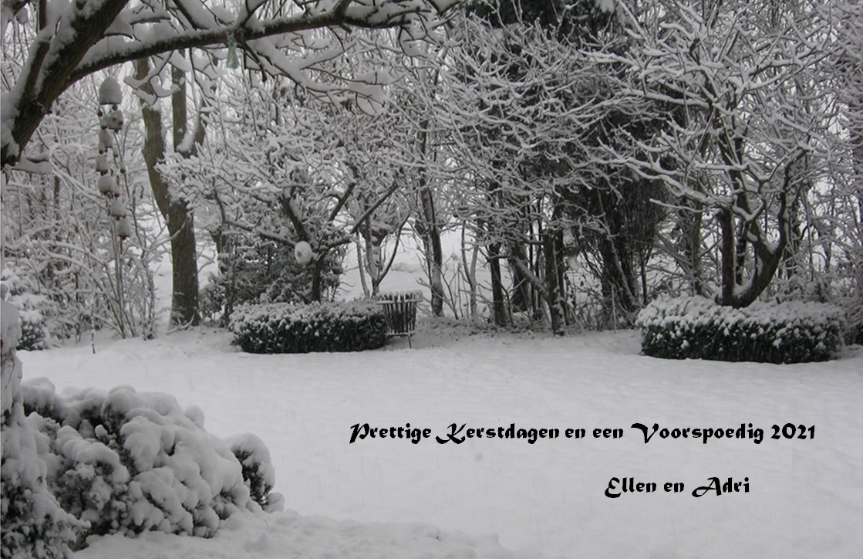 Naam: 2021 Kerst-NJ kaart Sneeuwtuin.jpg Bekeken: 151 Grootte: 299,0 KB