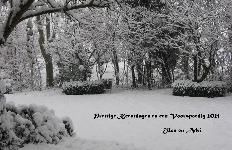 Naam: 2021 Kerst-NJ kaart Sneeuwtuin.jpg Bekeken: 177 Grootte: 299,0 KB