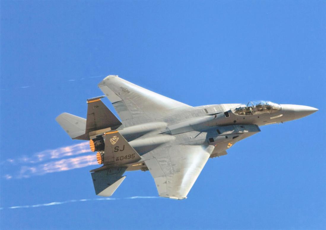 Naam: Foto 708. McDonnell Douglas F-15E-48-MC Strike Eagle. s:n 89-0495 (MSN 1142:E117). 1100 breed.jpg Bekeken: 121 Grootte: 49,2 KB